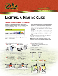 Zilla Lightning & Heating Guide