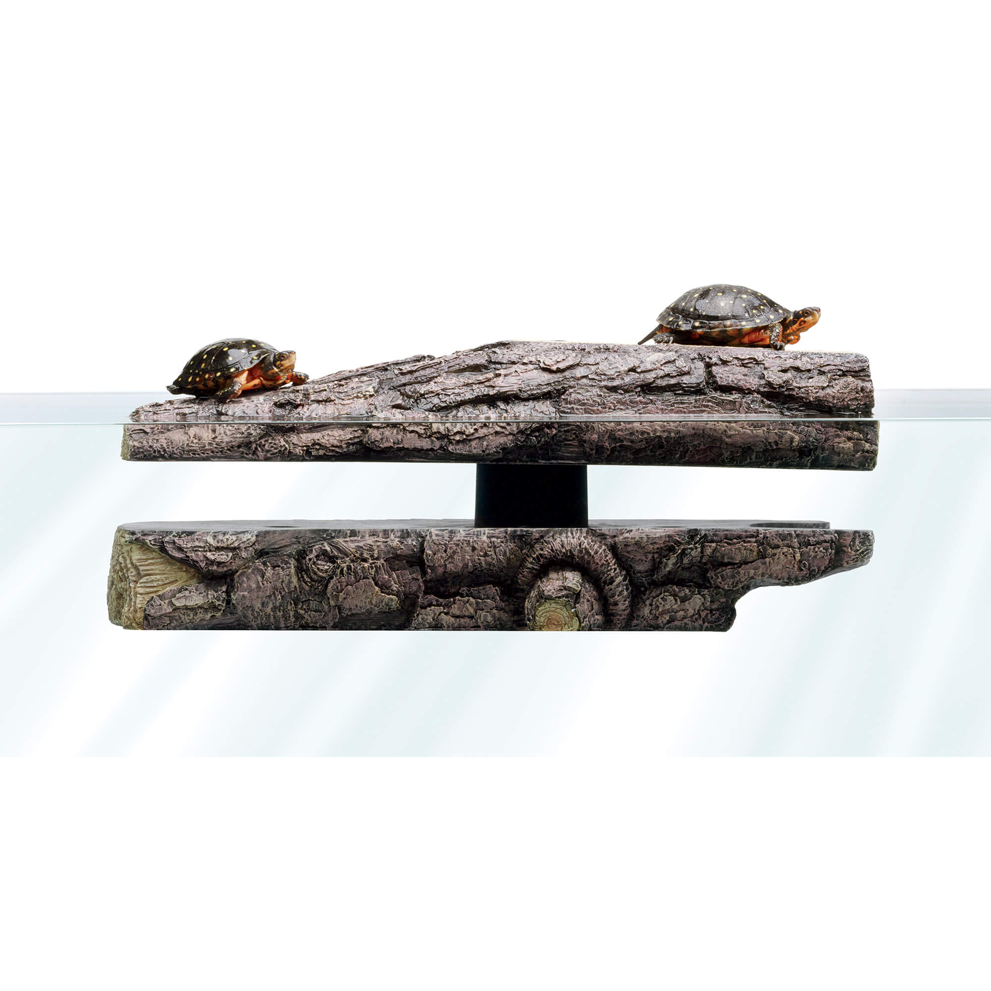 Log shaped decor piece with floating top and turtles basking