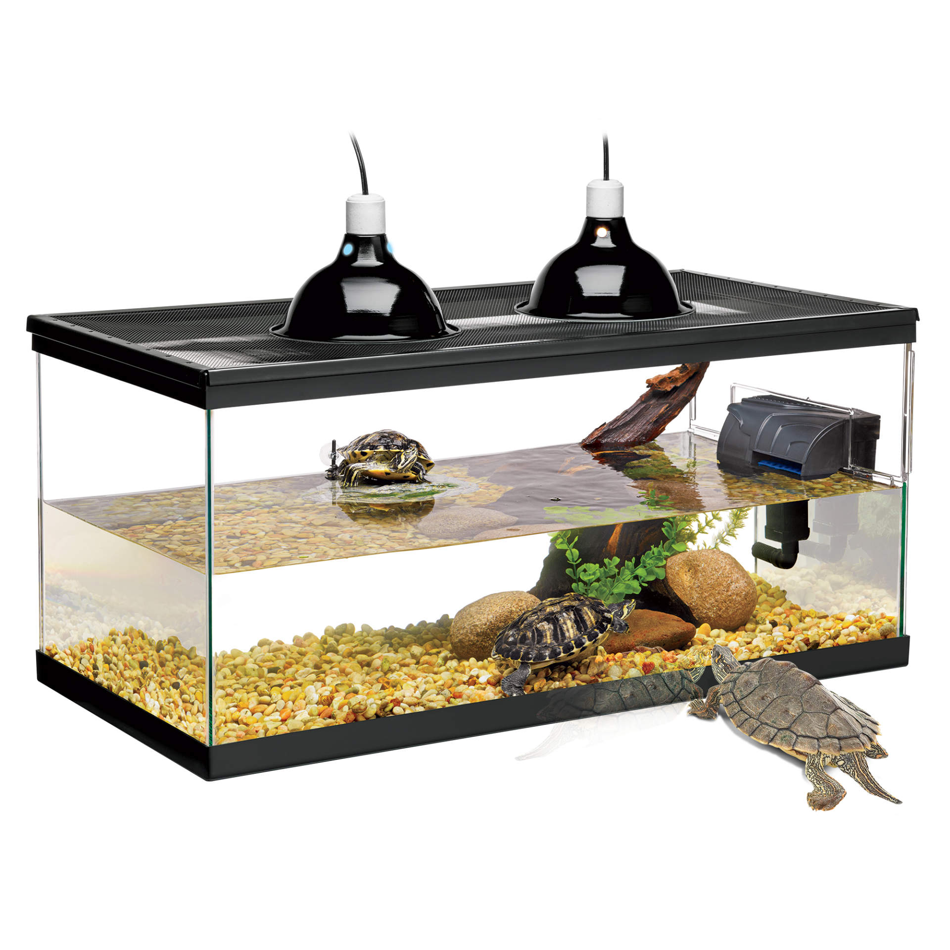 Glass Terrariums Kits Enclosures Products Zilla