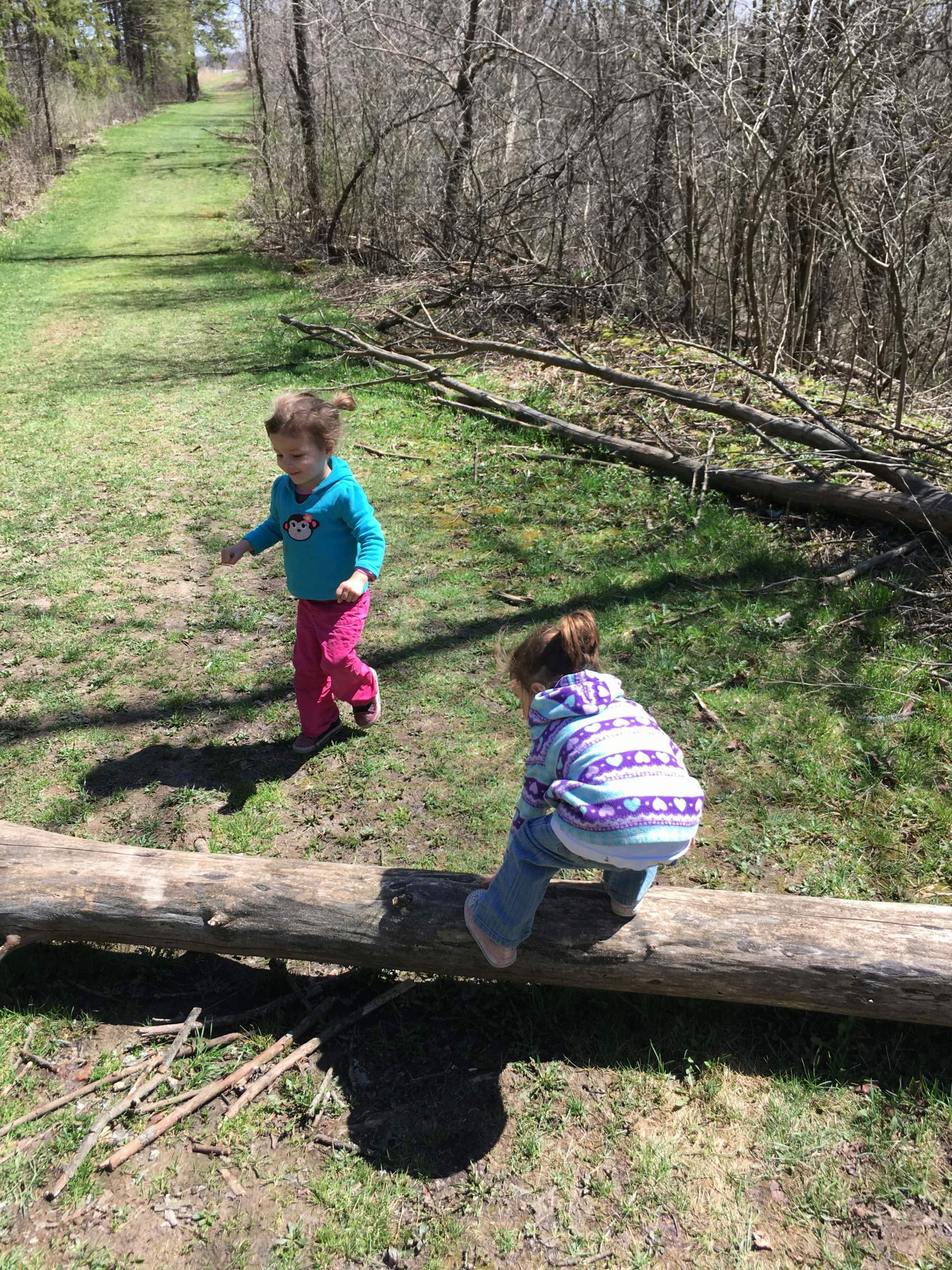 two little kids field herping in the grass and fallen logs